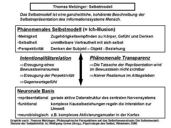 Theorie des Selbstmodells nach Thomas Metzinger