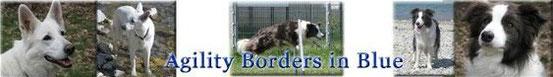 Annette und ihre Border Pia & Beau