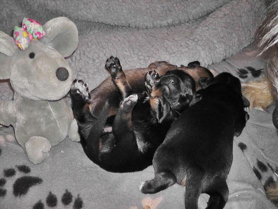 31.10.2012 - Mamis Milch ist sooooooooo lecker......