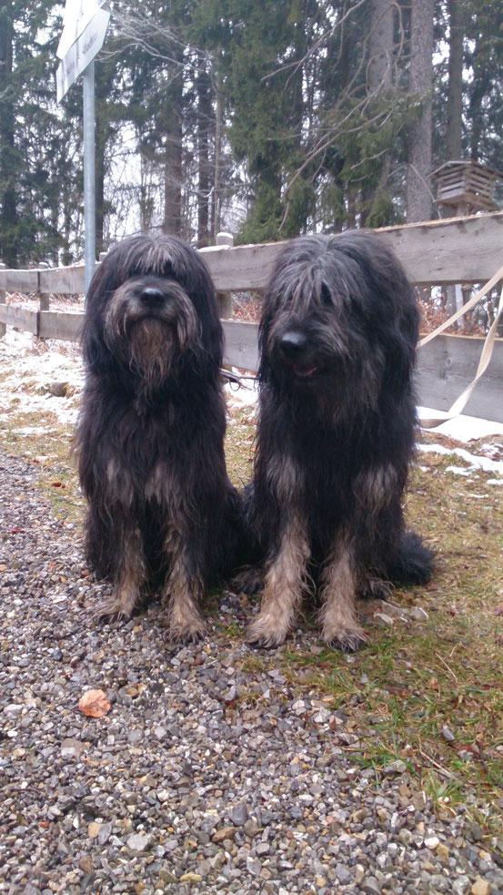 Pipi und Aaron