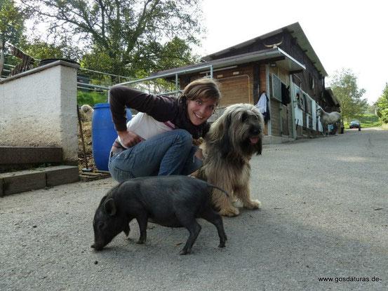 Therapiebegleithund Ben mit Sozialpädagogin Joy Fehm und Minischweinchen Charlie
