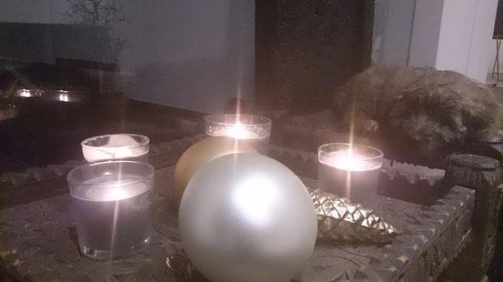 Bea wünscht eine besinnliche Weihnachtszeit