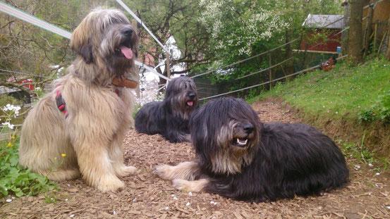 Bea mit Pipi und Aaron , Mai 2015