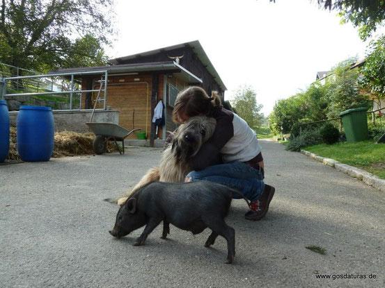 Ben mit Joy und Minischwein Charlie