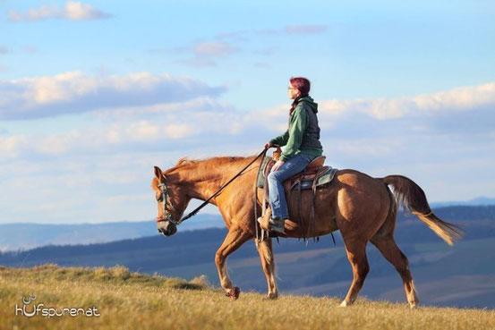 Foto vom Fotoshooting 2014: Kadou beim Ausritt mit seiner Besitzerin Kathrin (Pferdefotografie Hufspuren mit Hanna Stemke), www.hufspuren.com)