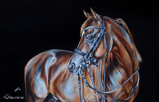 "Das Pferdegemälde von Dressurpferd und Araberhengst ""Bolero Ibn El Sueno"",  Acrylgemälde, www.hufspuren.com"