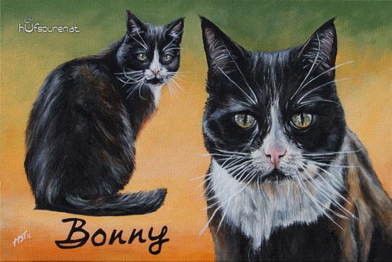 "Katzen-Collage ""Bonny"", Acryl auf Leinwand, 60x40"