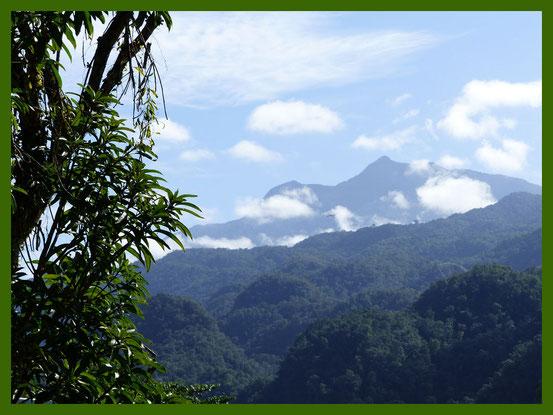 Der höchste Berg Sarawaks, der Mount Gunung Mulu