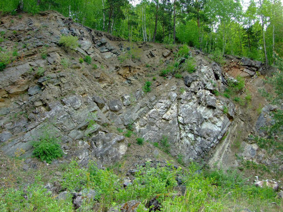Schichtung der Kalksteine an der östlichen Abbauwand des Kalkbruches Pacova Hora