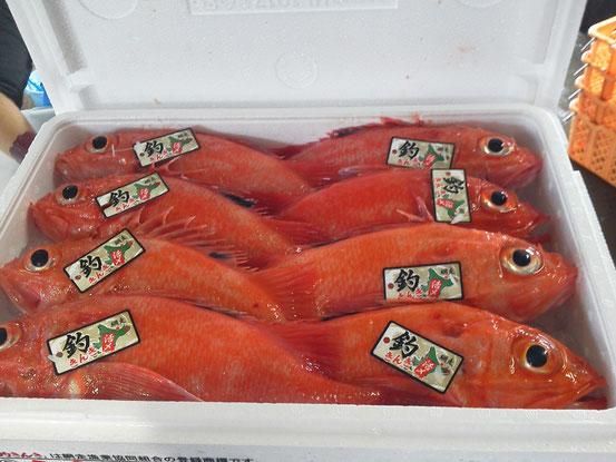 網走のブランド「釣きんき」