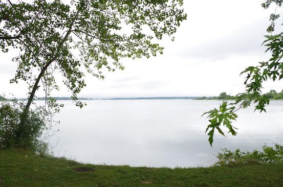Lac de Madine - 10 juillet 2014 - 10h