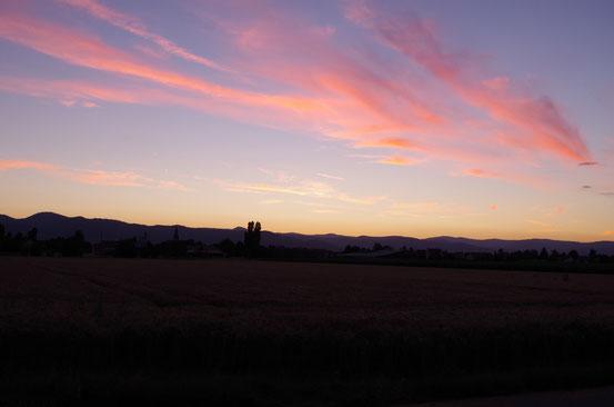 Le couché de soleil dans les plaines d'Alsace