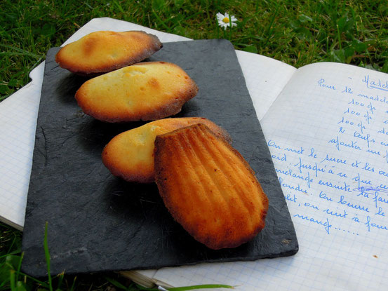 madeleines picture