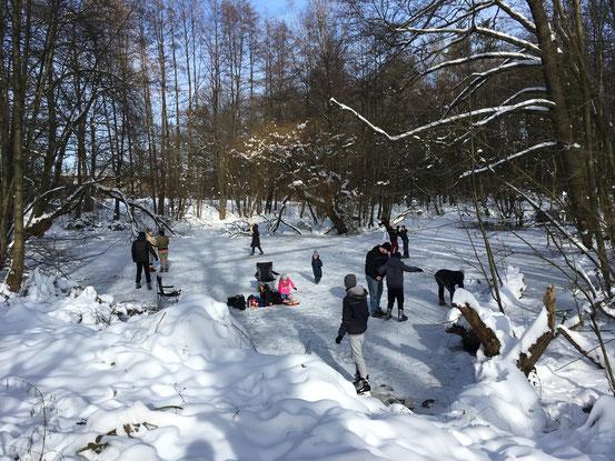 Januar/Februar 2021_Winterfreuden auf dem Nacketeich in Altenhagen_Foto: W. Kammeier