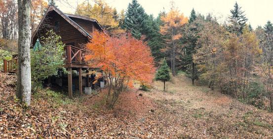 秋のマイエンフェルダー