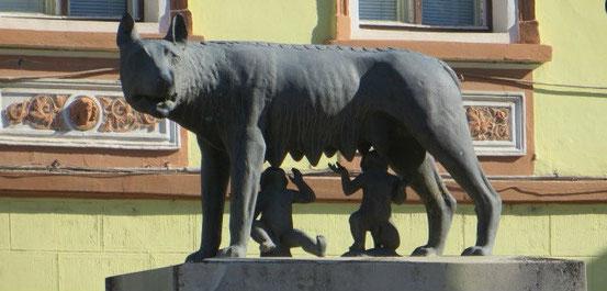 Romulus und Remus in Sighisoara (Schäßburg) / Foto: alp