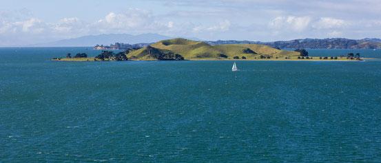 Eine der vielen Inseln vulkanischen Ursprungs vor der Küste Aucklands.