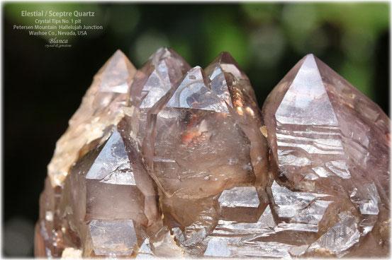 エレスチャル 原石 アメリカ ネバダ ハレルヤジャンクション 写真