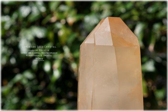 レムリアンシードクリスタル 原石 ナチュラル 写真
