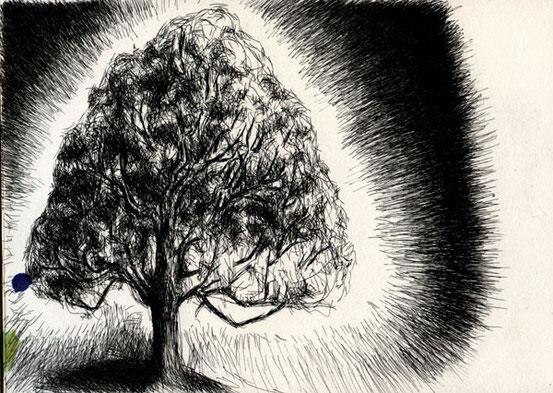 Light tree - Maple