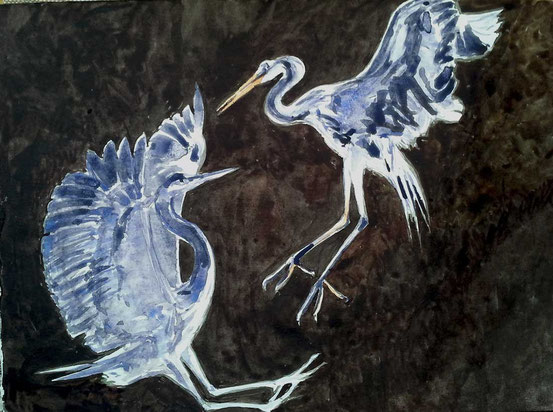 dance of gray herons