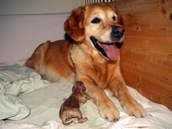 Die stolze Mutter mit einem ihrer Kleinen...