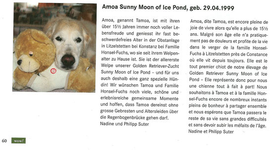 Amoa Sunny Moon of Ice Pond ist die Tochter von Royal Crest Gold'N Tinkerbell und Aki von der Nüniwand