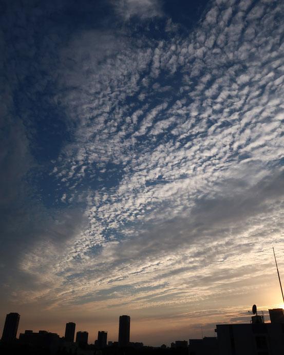 6月のうろこ雲