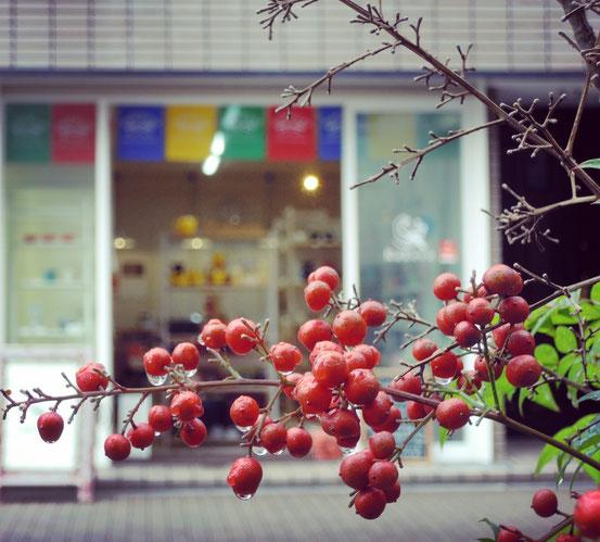 南天の実とカケス雑貨店