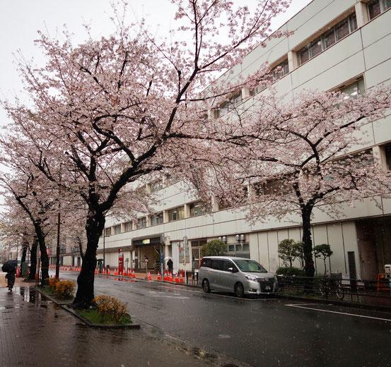 上野駅入谷口