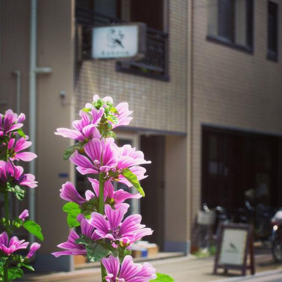 花壇の花とカケス雑貨店看板