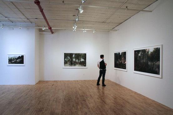 Rare Earth at Momenta Art, 2012