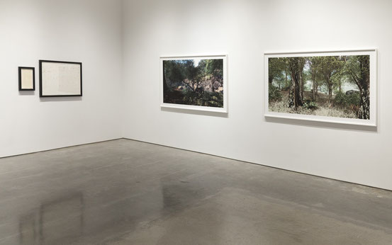 Rare Earth photos at Yossi Milo Gallery, 2012 (with work by Stephen Prina on right)