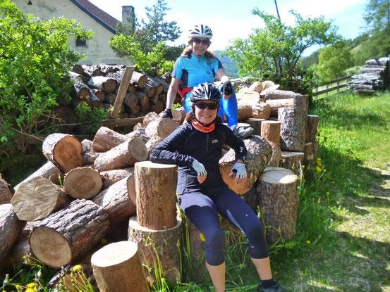 Meine Damen haben viel Holz vor der Hütte