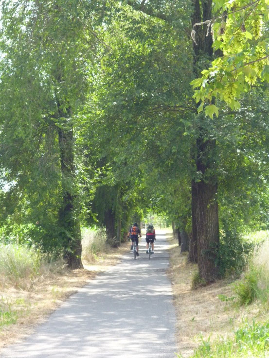 Schöner kann man sich einen Radweg nicht vorstellen