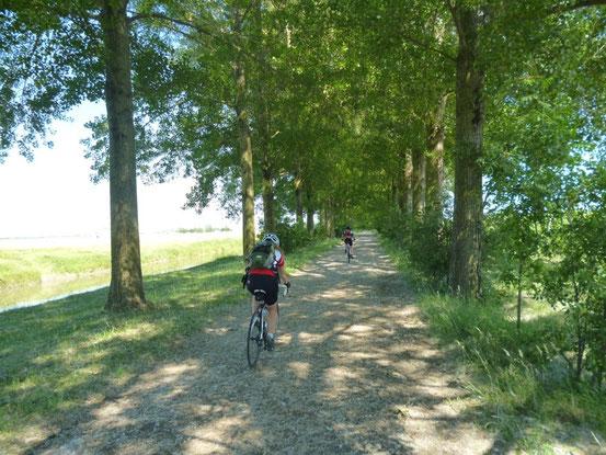 Toller Radweg nach Ferrara