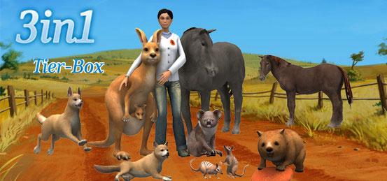 Header 3 in 1 Tier-Box: Meine Tierpension – Tapsige Tiere machen Ferien + Mein Beautyhotel für Tiere + Meine Tierarztpraxis in Australien