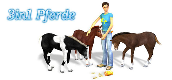 Header 3in1: Mein Pferd + Mein Gestüt + Mein Gestüt – Ein Leben für die Pferde