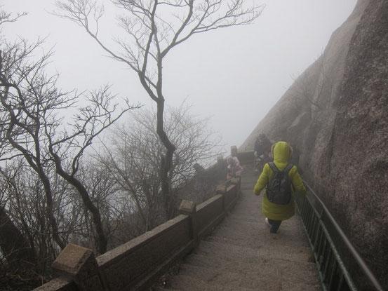 濃霧で見えませんが左は深~い谷です。手すりがないと怖くて歩けません。でも周りの景色が見えないのはメチャ残念。