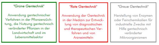 Abbildung 1: Anwendungsbereiche der Gentechnik (vgl. Schorb 2005)