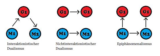Eine Übersicht über die 3 wichtigsten Dualismus-Typen.