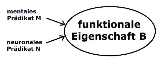 Neuroidentitätstheorie