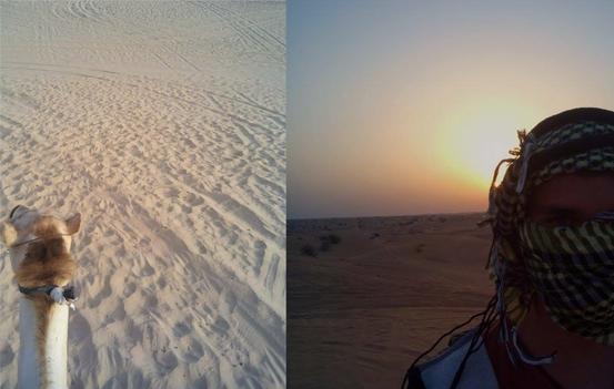 Von Dubai aus auf Kamelen durch die Wüste – mein persönliches Highlight.