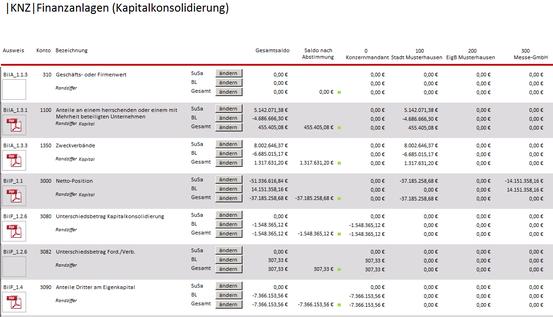 Ausschnitt aus dem Formular zur Kapitalkonsolidierung