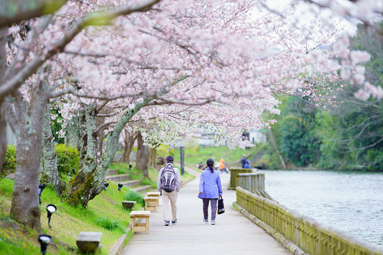 亀岡市都市緑花協会理事長賞