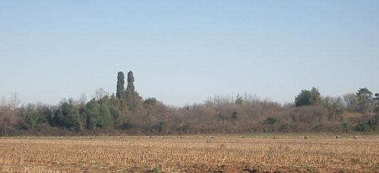 Monte Medolano, Profilo.