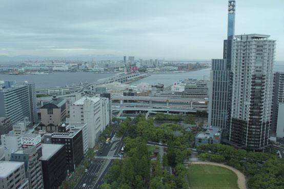 神戸市役所からの景色。「世界との窓口」として栄えたこの港町を拠点に、Permanent Fishは海外の舞台へと羽ばたいていった