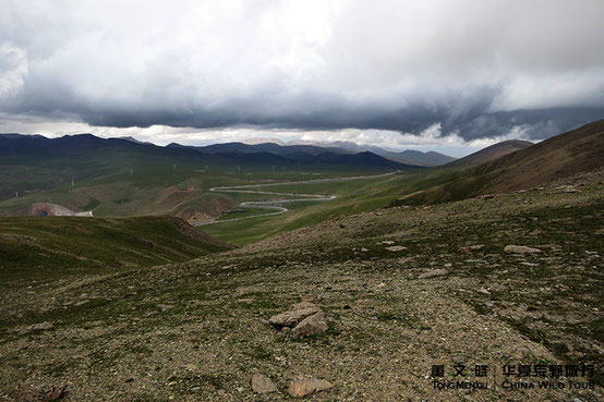 鄂拉山  ©  董文晓/华夏荒野旅行