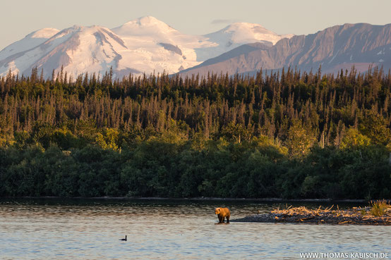 Katmai Nationalpark in Alaska