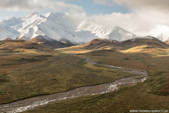 Polychrome Pass im Denali Nationalpark